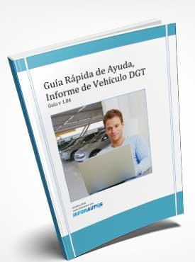 Guia informe vehiculo